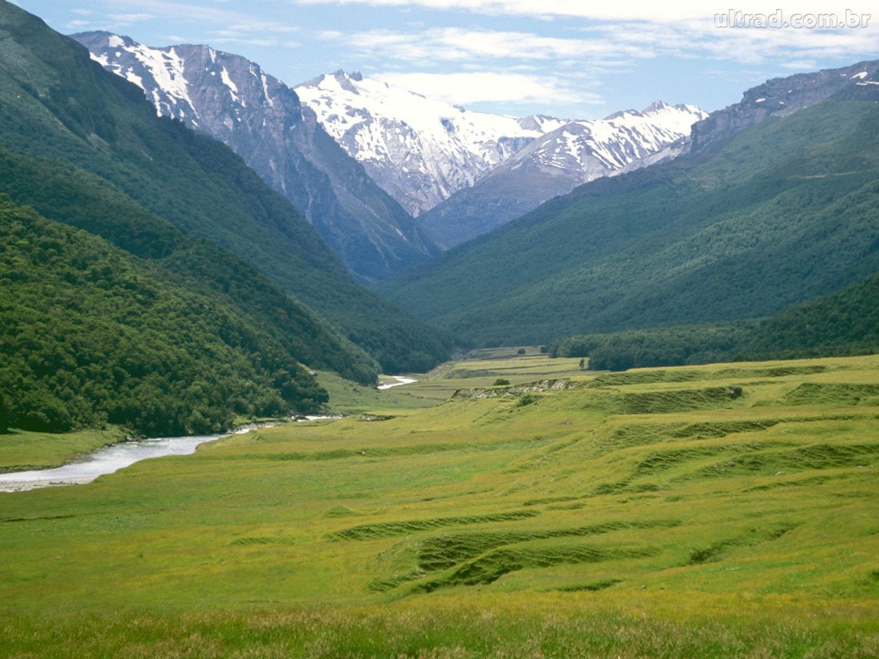 45863_Papel-de-Parede-Planicies-Cattle-Rio-Dart-Nova-Zelandia_1280x960
